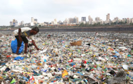 Plastic waste imports to India go up: report