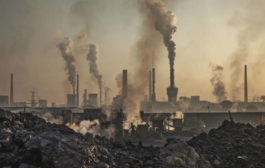 Carbon dioxide levels in atmosphere hit record high: UN