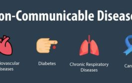 WHO report on Non communicable disease