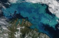 Climate change will force oceans to change colour