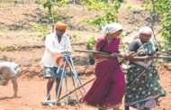 Project 'Prerna' to curb farmers' suicide