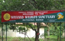 4 ecotourism centres closed in Kerala
