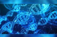 DNA Technology (Use and Application) Regulation Bill, 2019