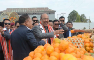 State-level 'orange festival' begins in Tamenglong, Manipur