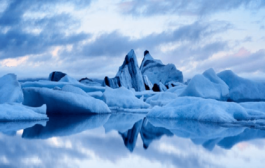 India re-elected as an Observer to Arctic Council