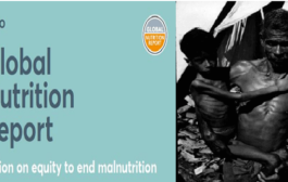 Global Nutrition Report 2020