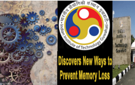 IIT Guwahati finds new ways to prevent memory loss due to Alzheimer's