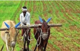 Govt allots Rs. 4000 crore to states under 'Per Drop More Crop'