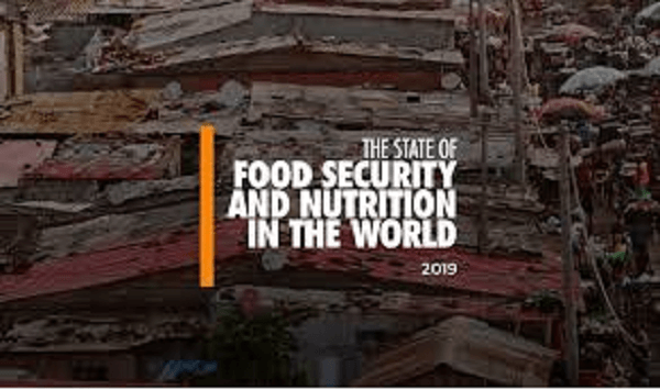 UNO's State of Food Security and Nutrition in the World 2020