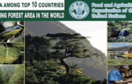 India ranks 3rd in raise in forest cover by Global Forest Resources Assessment