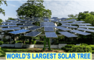 CSIR-CMERI develops world's largest solar tree