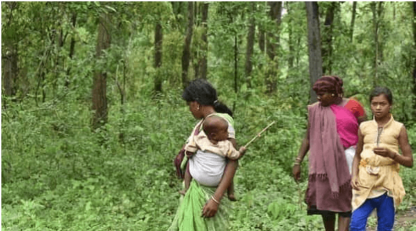 Maharashtra government has modified Forest Rights Act (FRA)