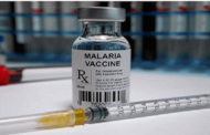 WHO Approves World's First Malaria Vaccine